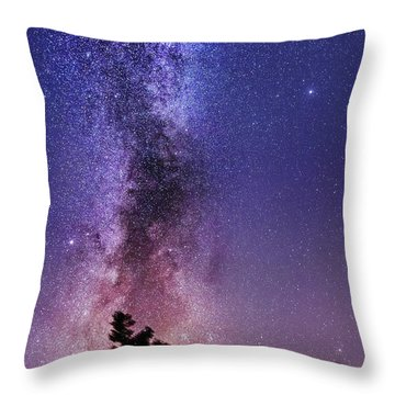 Vertical Milky Way Throw Pillow