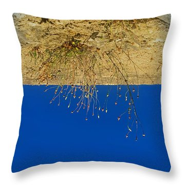 Vertigo II Throw Pillow