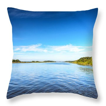 River Blue Throw Pillow