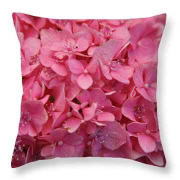 Very Pink Hydrangea Blossoms 2578 H_2 Throw Pillow