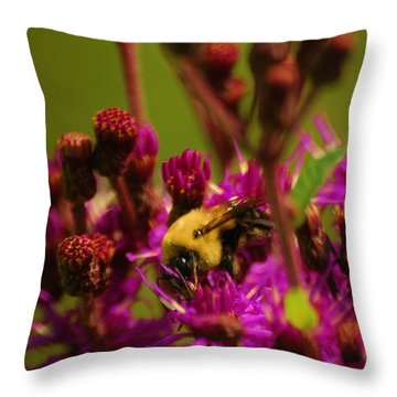 Throw Pillow featuring the photograph Very Sweet by Ramona Whiteaker