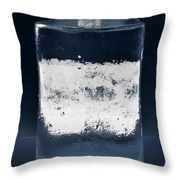 Vessel #8319 Throw Pillow