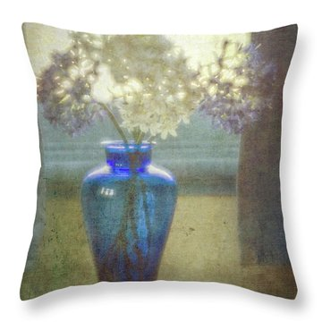 Vessel Of Light Throw Pillow