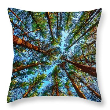 Throw Pillow featuring the photograph  Veterans Acres Park Pine Grove by Tom Jelen