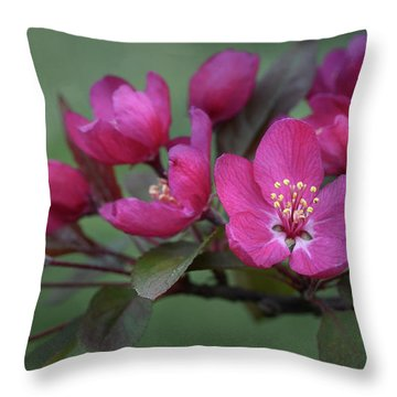 Throw Pillow featuring the photograph Vibrant Blooms by Ann Bridges