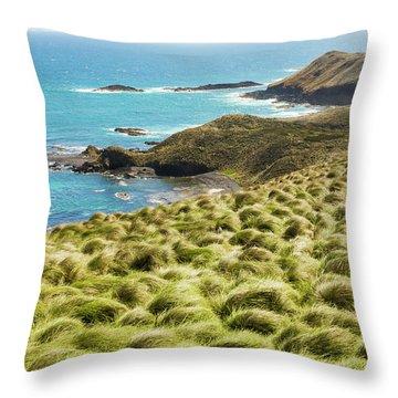 Vibrant Cape Seascape Throw Pillow