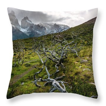 Throw Pillow featuring the photograph Vibrant Desolation by Andrew Matwijec