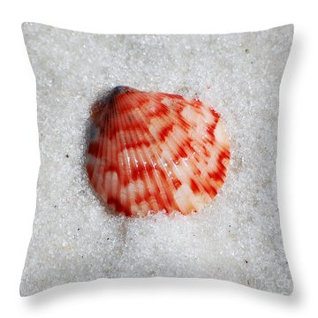 Vibrant Red Ribbed Sea Shell In Fine Wet Sand Macro Square Format Throw Pillow