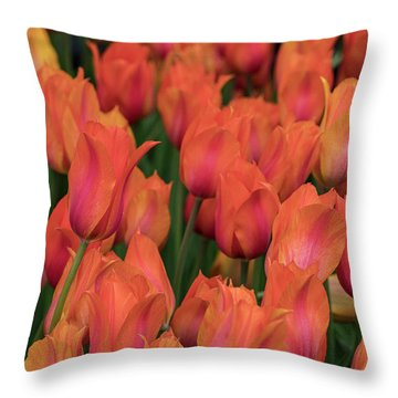 Vibrant Whispers Throw Pillow