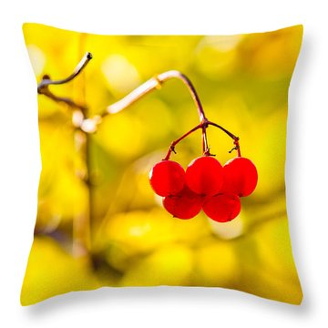 Throw Pillow featuring the photograph Viburnum Berries - Natural Olympic Emblem by Alexander Senin