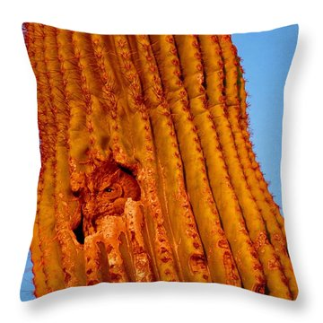 Victor's Golden Hour Throw Pillow