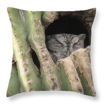Victor's Home Throw Pillow