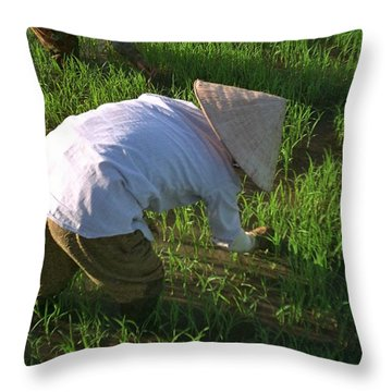 Vietnam Paddy Fields Throw Pillow
