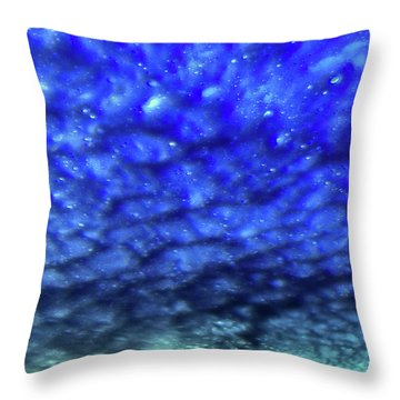 View 7 Throw Pillow