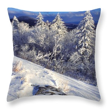 View Along Highland Scenic Highway Throw Pillow