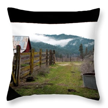 View From A Barn Throw Pillow by Lorraine Devon Wilke