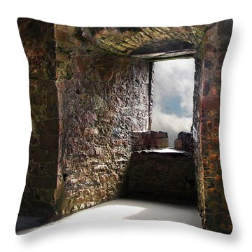 View From A Lofty Tower Throw Pillow