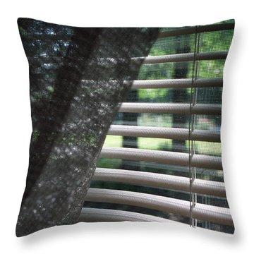 Throw Pillow featuring the photograph View From A Window by Wanda Brandon