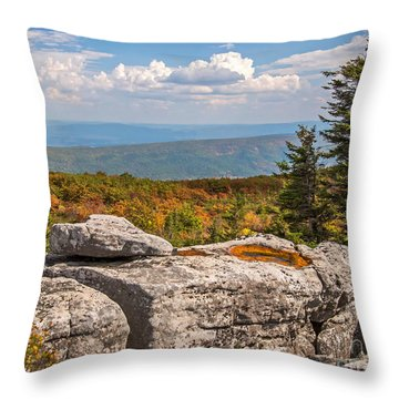 View From Bear Rocks 4173c Throw Pillow