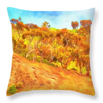 View From Blufftop Trail Throw Pillow