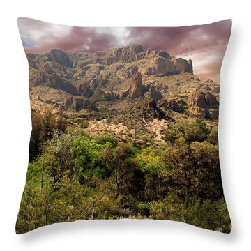 View From Boyce Thompson Throw Pillow by Anne Rodkin