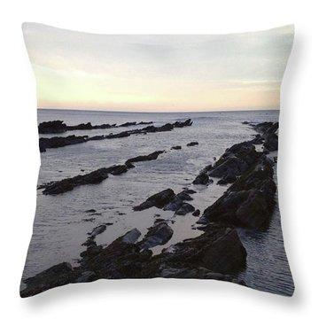 Ocean's Maw Throw Pillow