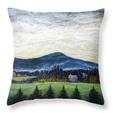 View From Ernie Lane Throw Pillow