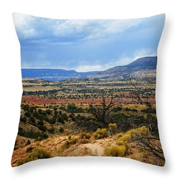 Throw Pillow featuring the photograph View From Ghost Ranch, Nm by Kurt Van Wagner