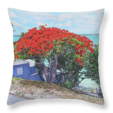View From Hill Street Throw Pillow