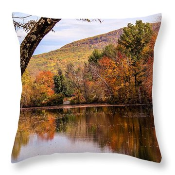 View From Manhan Rail Trail Throw Pillow