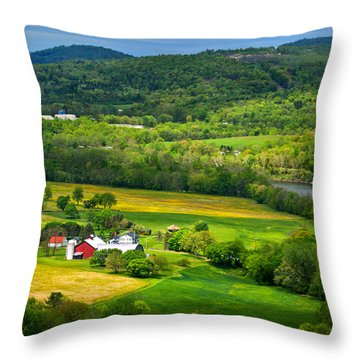 View From Marie Antoinette Overlook Throw Pillow