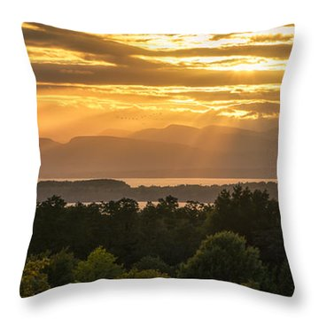 View From Overlook Park Throw Pillow by Craig Szymanski