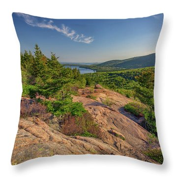 View From South Bubble Throw Pillow by Rick Berk