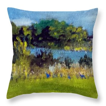 Throw Pillow featuring the painting View From Sturgeon City Park by Jim Phillips