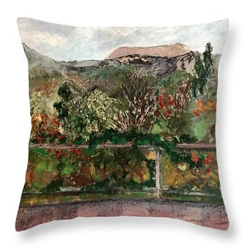 View From The Deck Throw Pillow