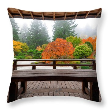 View From The Pavilion Throw Pillow
