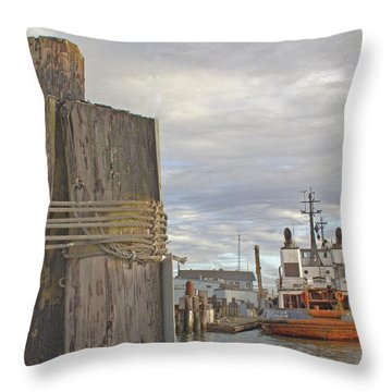 View From The Pilings Throw Pillow