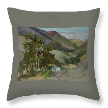 View From The Reservoir - Catalina Island Throw Pillow