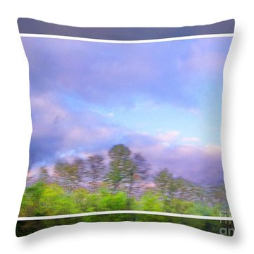 View From The Road 1 Throw Pillow by Shirley Moravec
