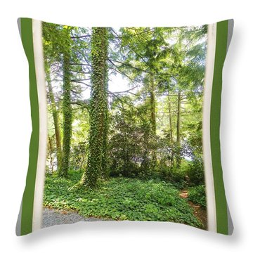 View From The Road 4 Throw Pillow