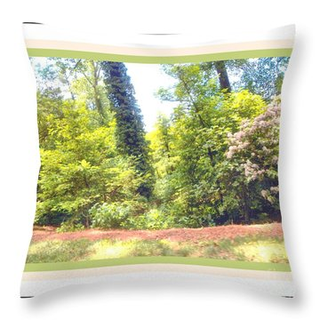 View From The Road 5 Throw Pillow