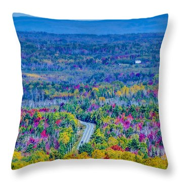 View From Top Of Court House Hill Throw Pillow