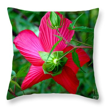 Throw Pillow featuring the photograph View From Underneath by Sue Melvin