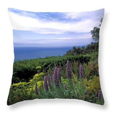 View From Ventana Big Sur Throw Pillow by Kathy Yates