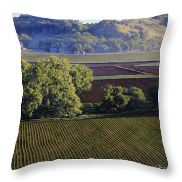View From Waterman South Throw Pillow