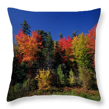 View In The Appalachian Mountains Throw Pillow by View in the Appalachian Mountains