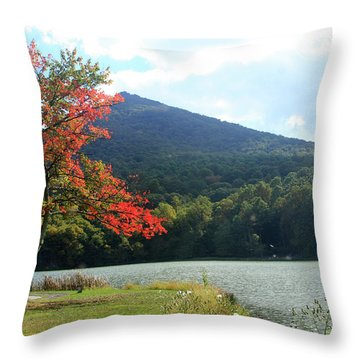 View Of Abbott Lake And Sharp Top In Autumn Throw Pillow by Emanuel Tanjala