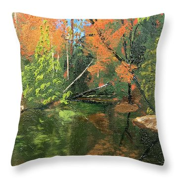 View Of Creek From Lake Huron Throw Pillow