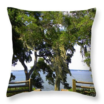 Throw Pillow featuring the photograph View Of Old Tampa Bay by Terri Mills