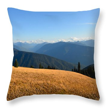 View Of Olympics From Hurricane Ridge Throw Pillow